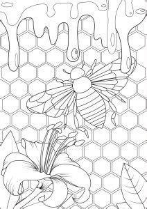 creations   partner artist arwen coloring pages