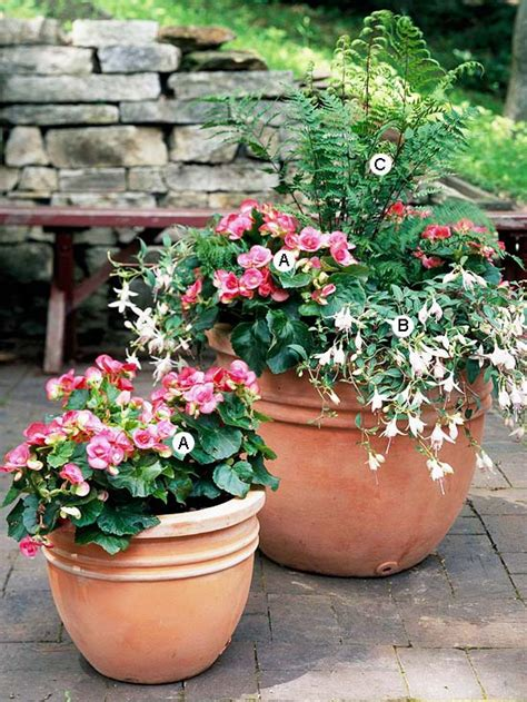 container recipes container garden recipes for shade
