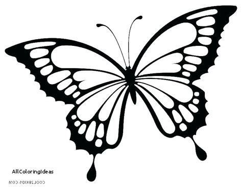 Free Butterfly Coloring Page Pages Of A Preschool C