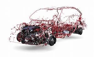 Automotive Wiring Harness Market Demands Into Light