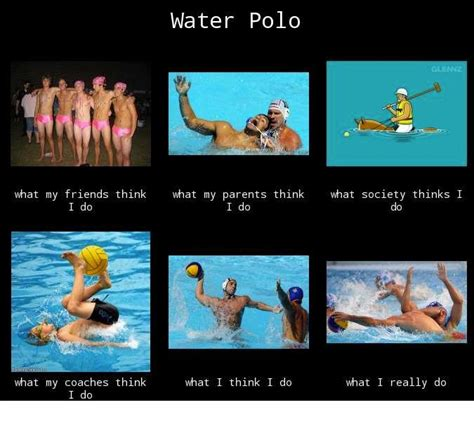 Meme Polo - 17 best images about water polo memes on pinterest water polo wake up and we