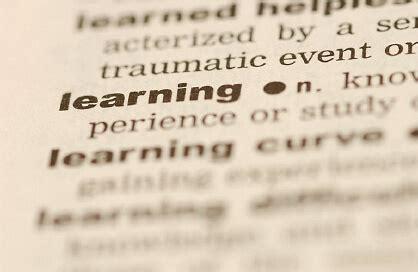 definition  learning david didau  learning spy
