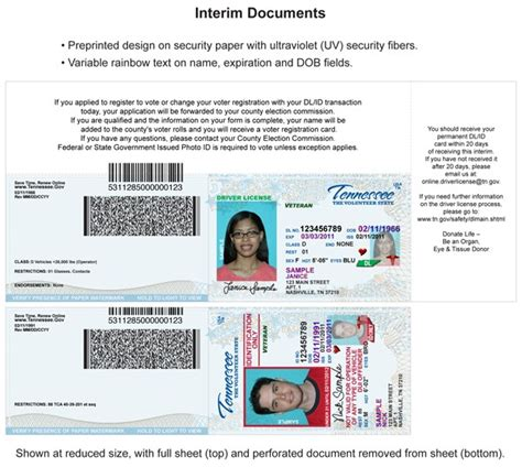 Driver License Card Examples
