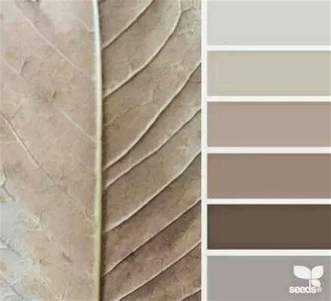 25 best ideas about taupe color schemes on