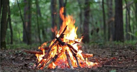 Simple Guide For Gathering Wood And Building A Fire 101
