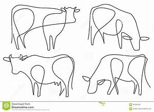 Cow Cartoons  Illustrations  U0026 Vector Stock Images