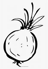 Coloring Onion sketch template