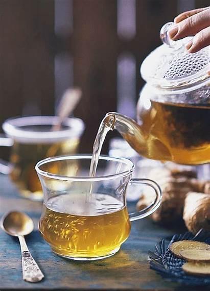 Tea Ginger Benefits Daria Winter Khoroshavina Gifs