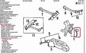 Rear Lower Control Arm Bushing