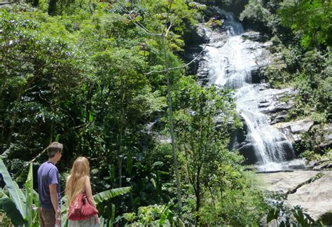 Tijuca Forest Best Guided Tour - Tijuca National Park Rio