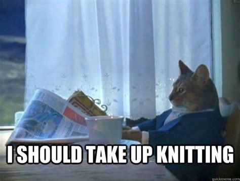 Knitting Meme - i should take up knitting morning realization newspaper cat meme quickmeme