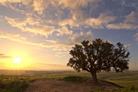 sunrises sunsets israel nature photography  ary