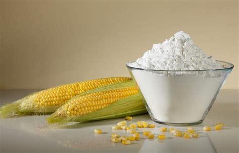 amido alimentare amido modificato cos 232 utilizzi e regime alimentare