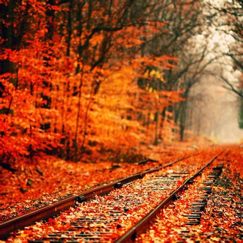 Fall Esthetic Backgrounds by 8tracks Radio That Fall Aesthetic 11 Songs Free And