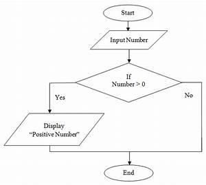 C Program Practicals  Draw Flowchart To Check Positive Number