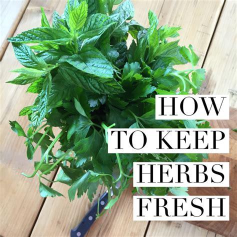 how to keep herbs fresh top tip