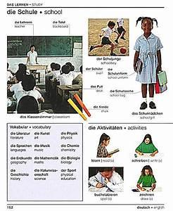 Rechnung Dict : visual bilingual dictionary german english buch portofrei ~ Themetempest.com Abrechnung