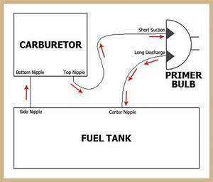 30 Poulan Chainsaw Primer Bulb Diagram