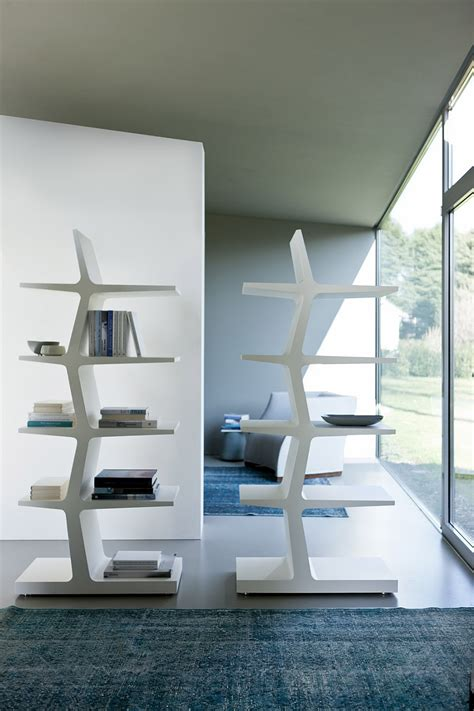 trendy modern bookshelves  unleash warmth  wood