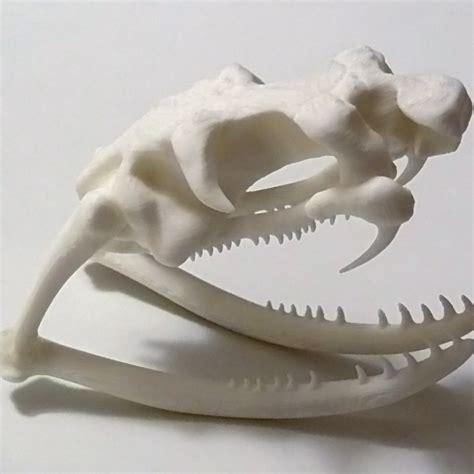 printable cobra skull  oskar mohar