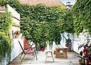 Cacher Vis A Vis Jardin : 10 astuces pour se prot ger des regards au jardin marie ~ Dailycaller-alerts.com Idées de Décoration
