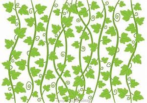 Ivy Vine Vector - Download Free Vector Art, Stock Graphics ...