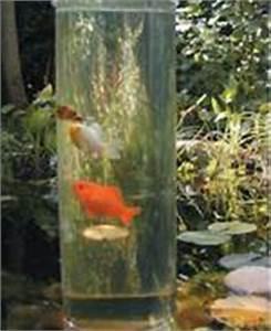 Aquarium Selber Bauen Plexiglas : fishloft ein loft f r deine fische ~ Watch28wear.com Haus und Dekorationen