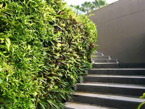 Betonmauer Im Garten » Darauf Ist Zu Achten