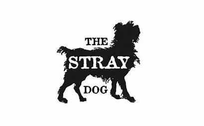Stray Dog Buffalo Closing Temporarily Moody