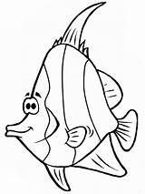 Fish Coloring Angel Cartoon Pages Drawing Angelfish Template Sketch Getdrawings Sky Coloringsky sketch template