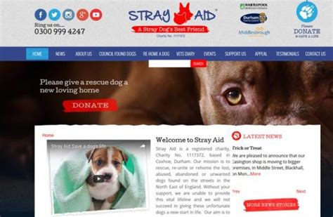 dog rescue organisations find  local dog rescue group