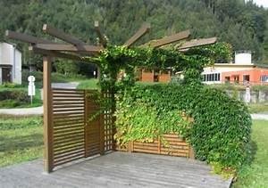 Sichtschutz Terrasse Pflanzen : sichtschutz pflanzen f r jeden garten von der hecke bis ~ Michelbontemps.com Haus und Dekorationen