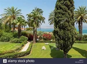 Berg Des Garten : palmen in den garten der seligpreisungen kirche mit blick auf den see genezareth berg der ~ Indierocktalk.com Haus und Dekorationen