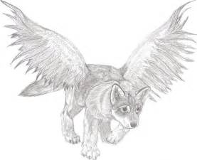 Wolf Pup with Wings Drawings