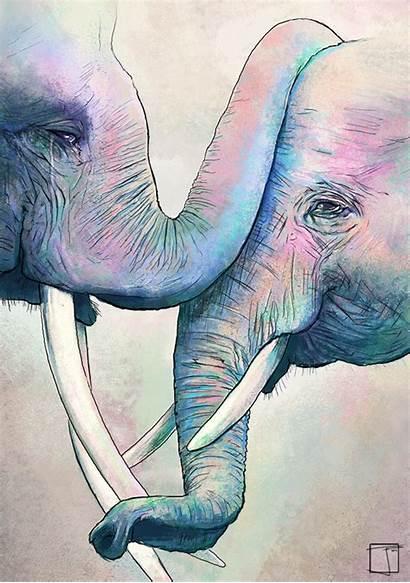 Guardado Desde Zeichnung Elefante