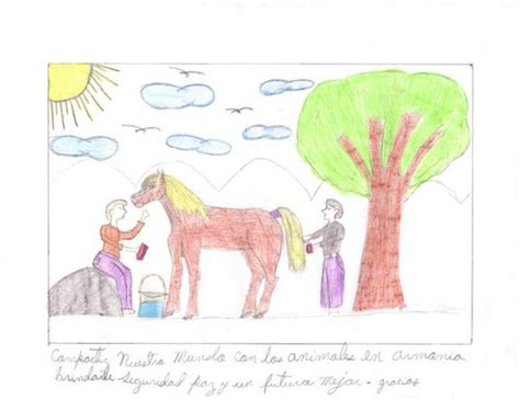 drawing competition compassion  animals