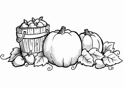 Coloring Fall Pages Printable