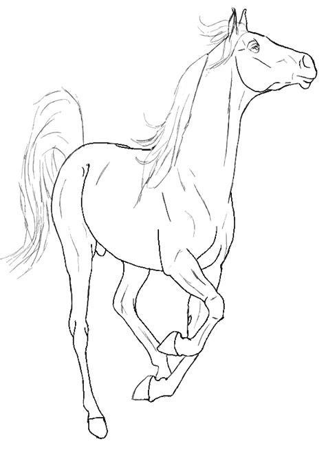 Kleurplaat Paardenhoofden by Paarden Kleurplaat Dieren Kleurplaat 187 Animaatjes Nl