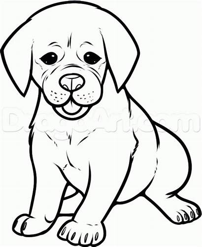 Puggle Draw Step Coloring Dog Pages Drawing