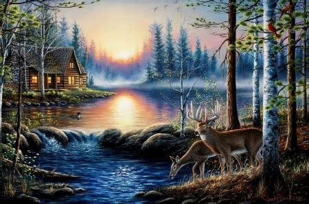 lakeside cabin lakes nature background wallpapers