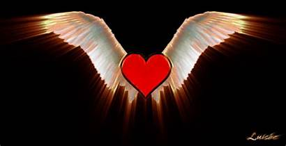 Wings Flying Heart Angel Fly Hearts Animated