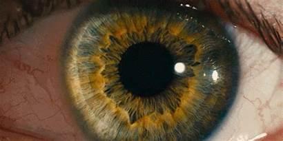 Ojos Origins Eyes Brit Marling Utopian Oscuridad