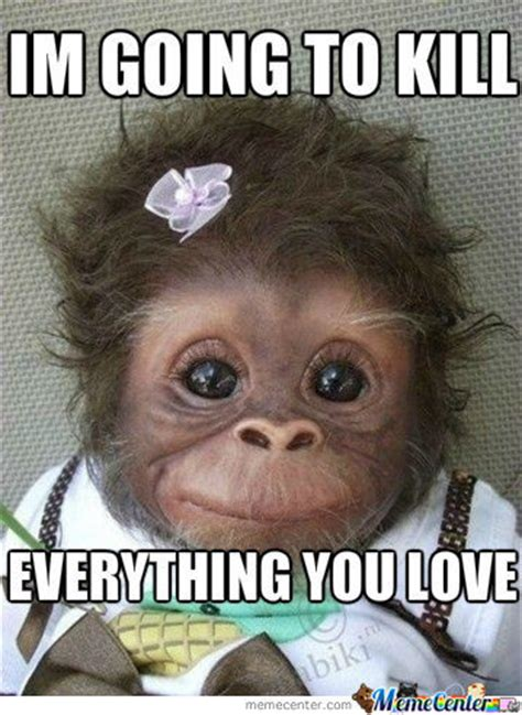 Monkey Face Meme - cute monkey pictures with cations cute monkey memes 1956 results funny quotes pinterest