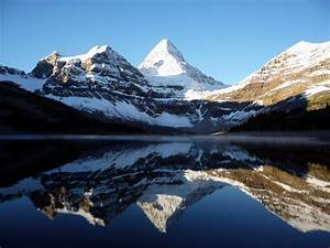 7 reasons to never go to canada - STA Travel Blog  Mount