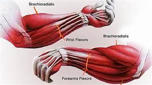 Tip  Fix Your Cranky Elbows And Sad Arms