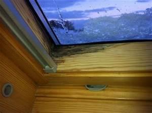 Wasser Am Fenster : tropfenbildung am dachfenster dachbau cottbus e k ~ Eleganceandgraceweddings.com Haus und Dekorationen