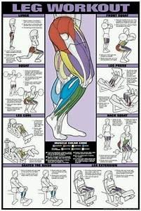 Workouts   Leg Workout  Workouts