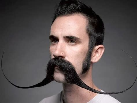 top   popular beard styles  men