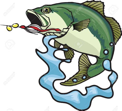 Bass Clipart Fishing Clipart Largemouth Bass Pencil And In Color