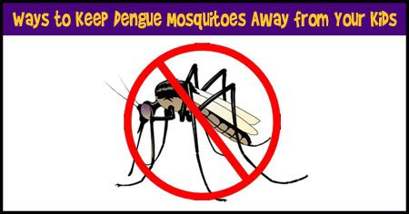 what can i use to keep mosquitoes away how to keep your kids away from dengue mosquitoes